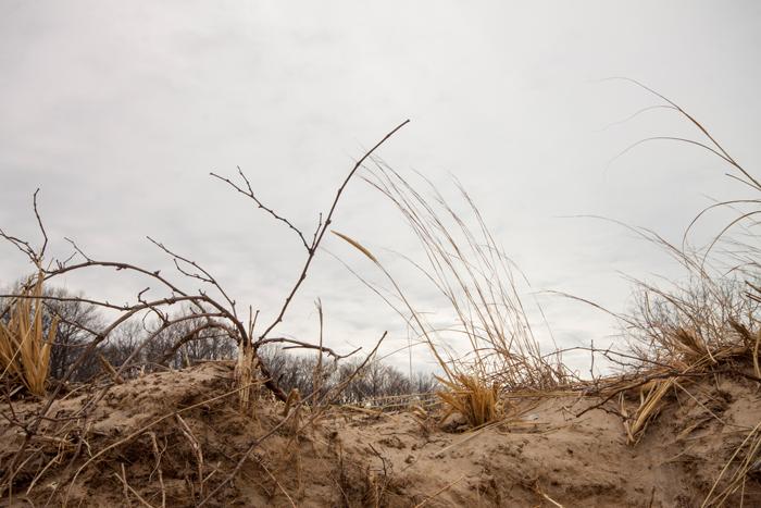 dunes-dune1-700